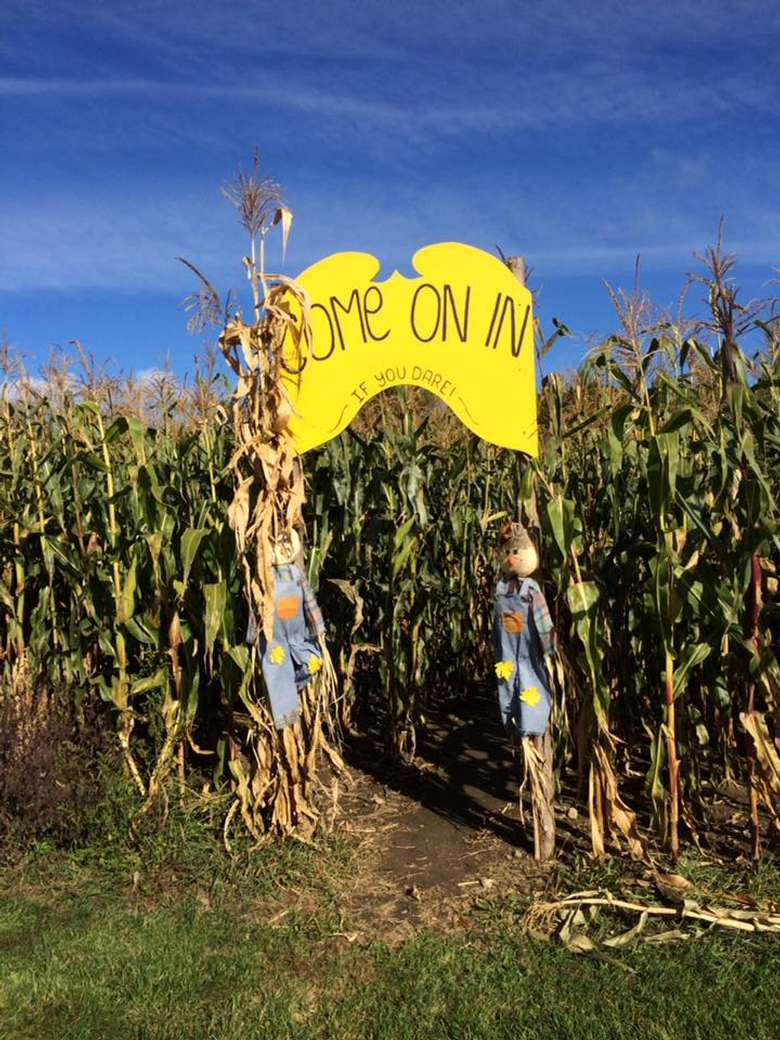 a sign marking the entrance of a corn maze