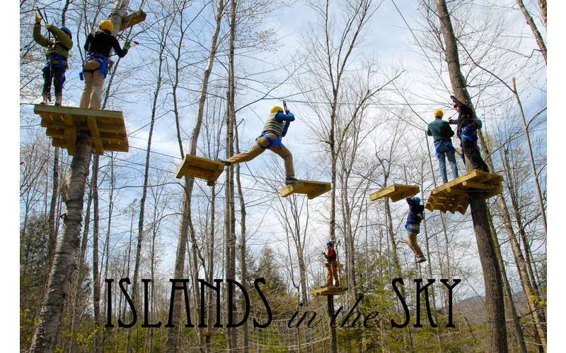 people maneuvering through an aerial course in the trees