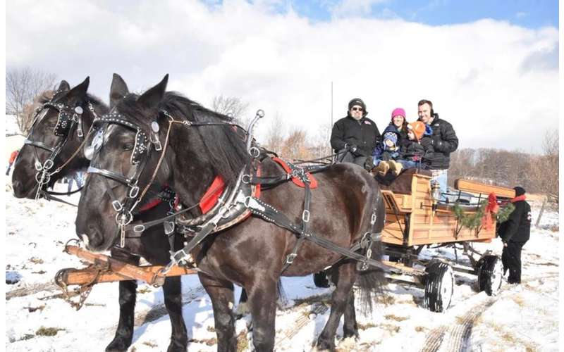 group on horse wagon ride in winter