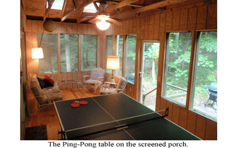 a ping pong table in a wood paneled room