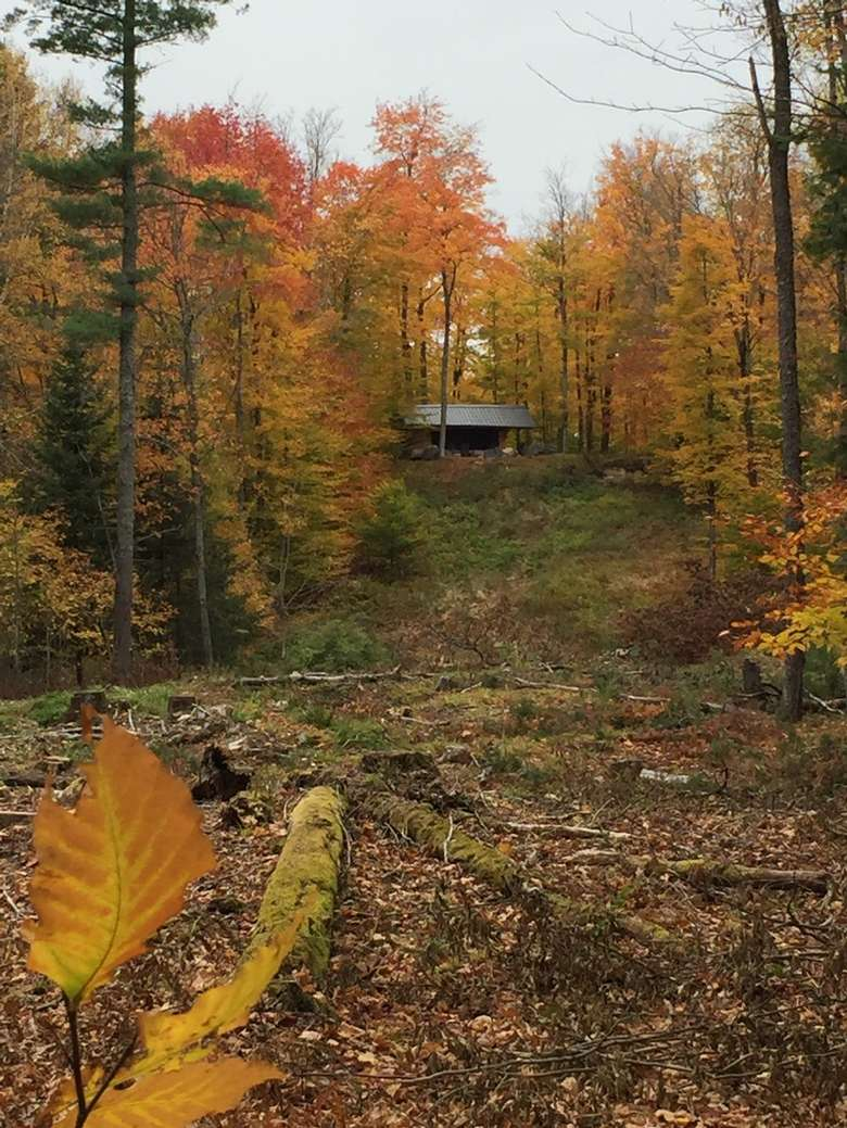 a lean-to in the distance, bright fall foliage in the area