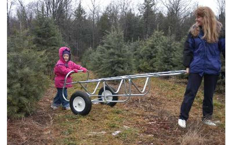 a girl and a woman moving a tree carrying cart
