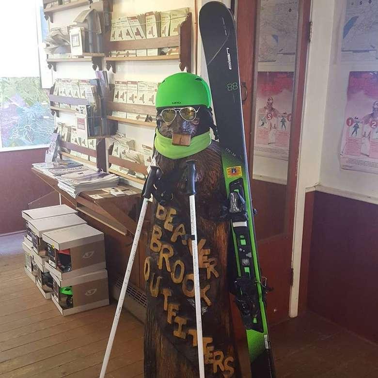 a ski helmet on a display