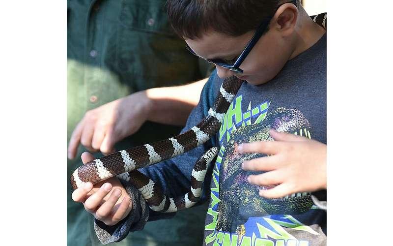 little boy holding a snake