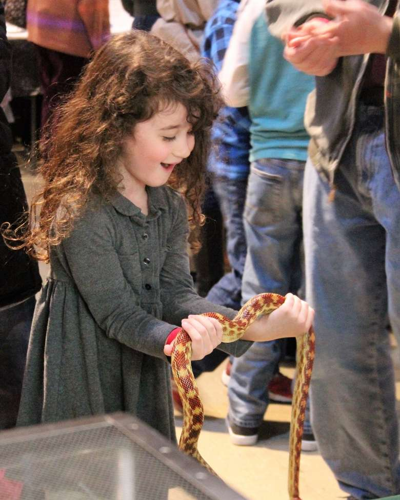 an amazed little girl holding a snake