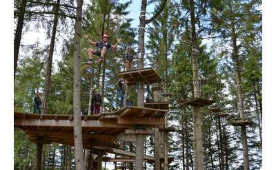 people moving around on wooden platforms on a treetop course