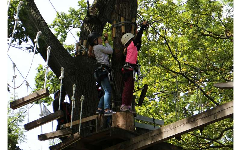 young kids moving on a ropes course