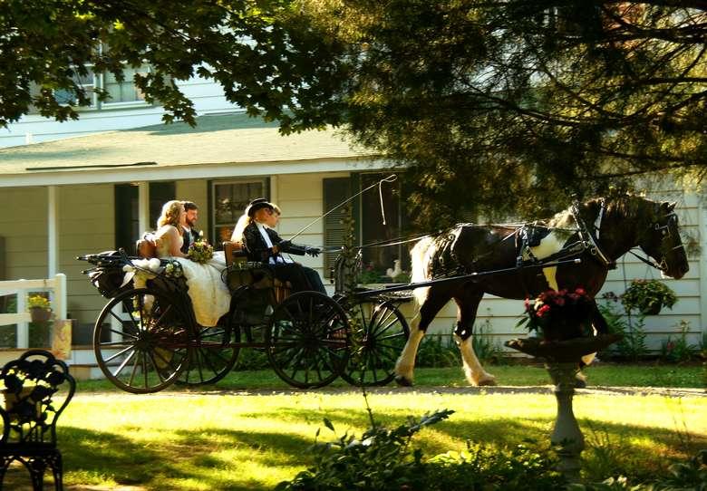 wedding couple in a horse drawn wagon