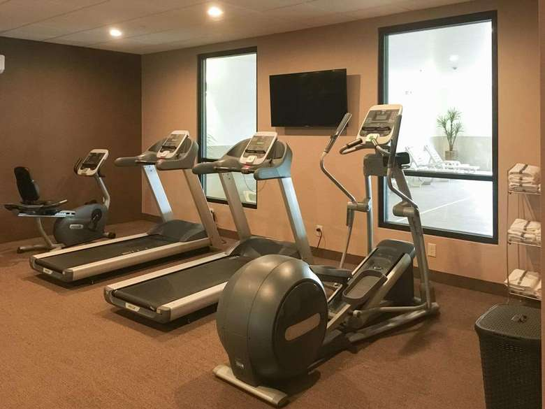 treadmills and fitness step machines