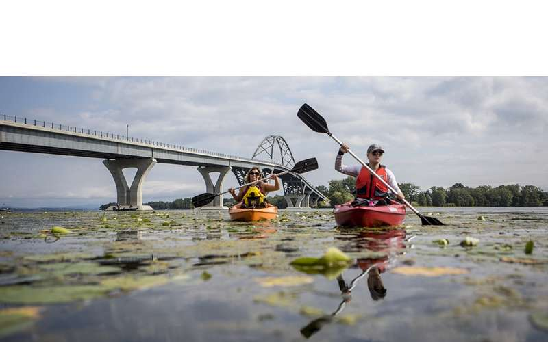people kayaking by a bridge