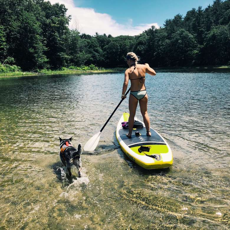 woman paddleboarding with her dog next to her