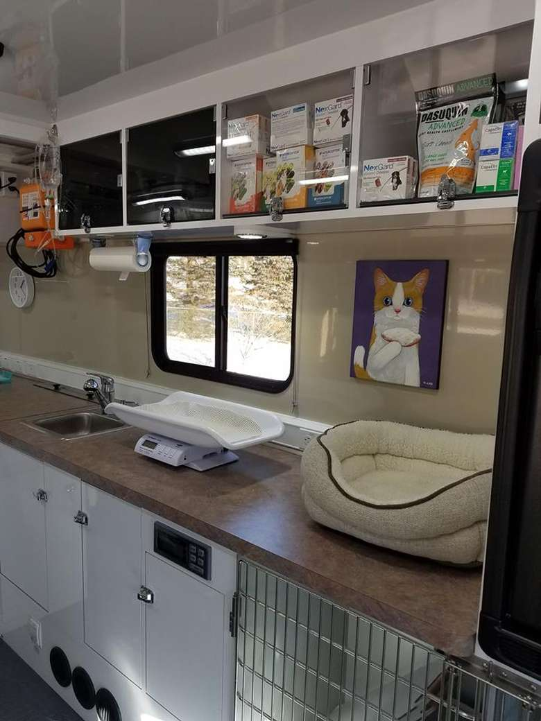 interior countertop Whiskers2Tails Mobile Veterinary Clinic.