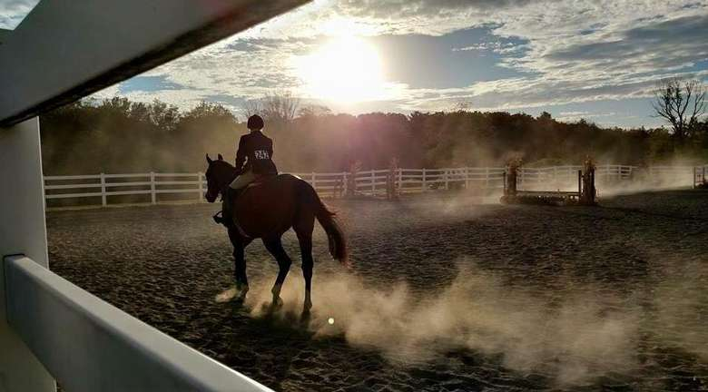 Horse and rider riding in the sunset