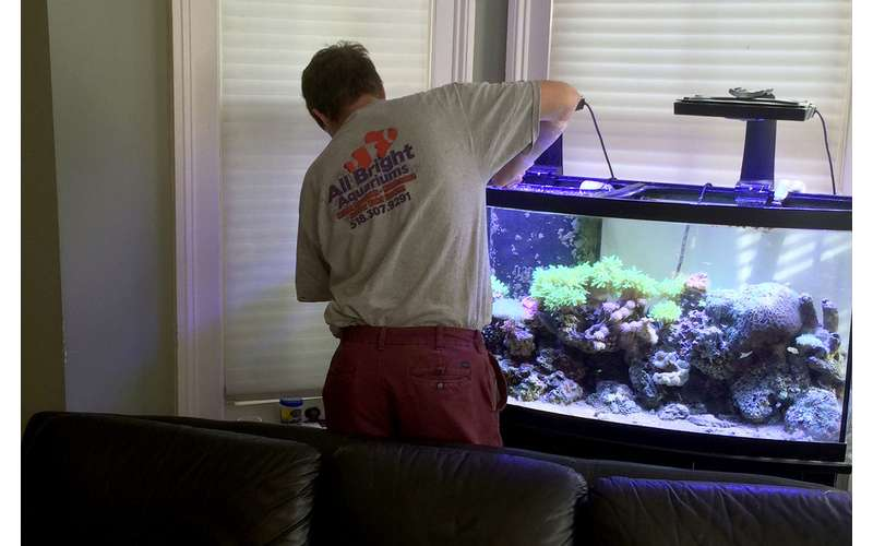 All Bright Aquariums employee performing maintenance on a fish tank