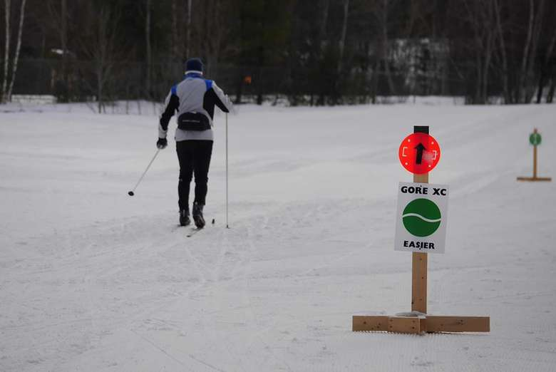 a cross country skier heading down an easy trail