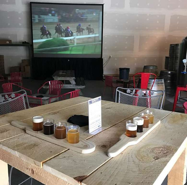 flights of beer on a table with horse race on the television