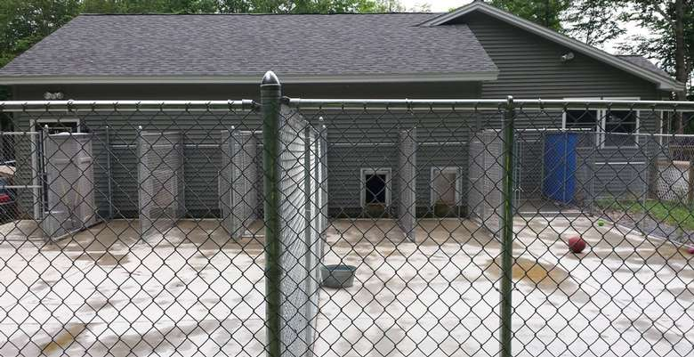 three fenced in outdoor kennel spaces