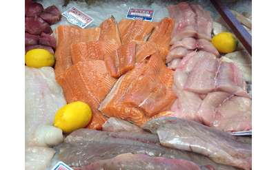 salmon and fish on display