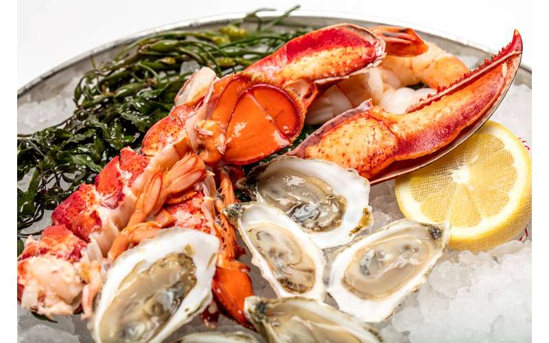 plate of lobster and other seafood