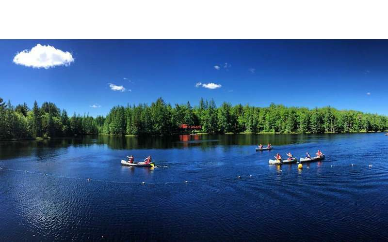 striking photo of kayaks in water surrounded by forest