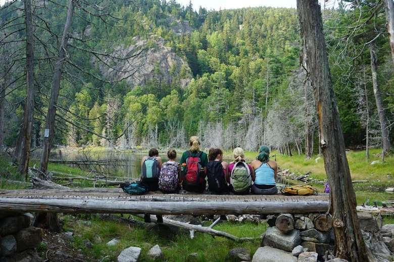 group of campers on a log gazing out at the woods