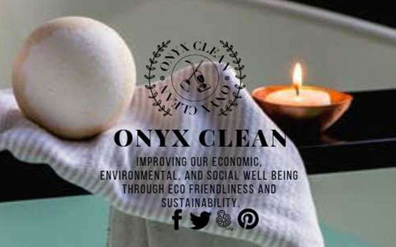 logo and graphic for onyx clean