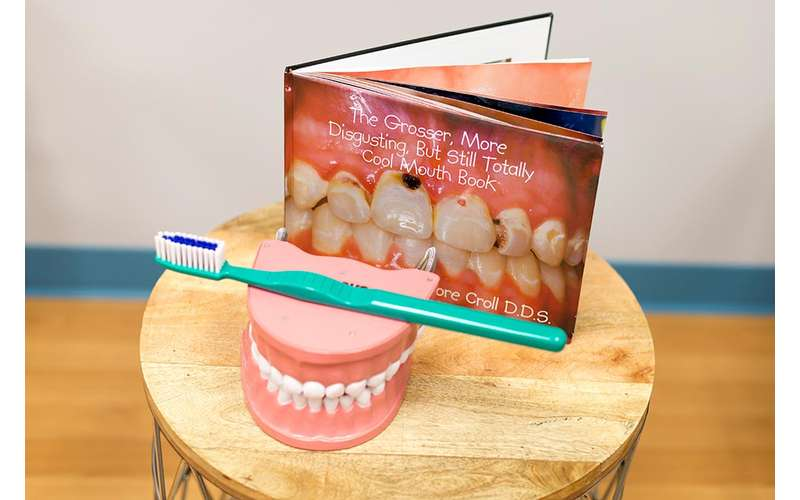 teeth and toothbrush display near a book
