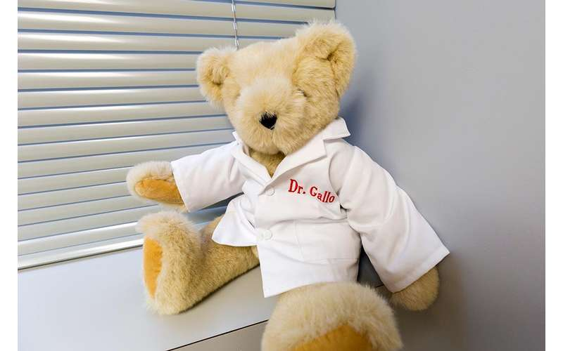 teddy bear with a dr. gallo shirt