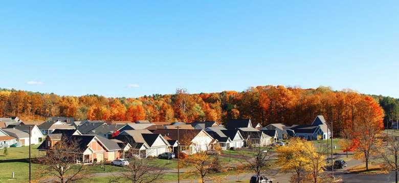 community in fall