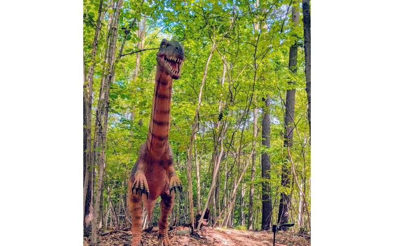 photo of dinosaur