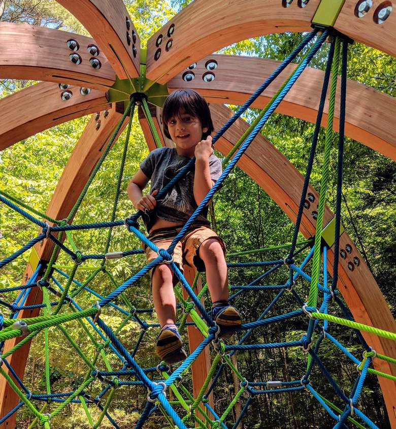 kid climbing on ropes