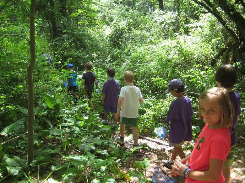 kids walking through scenic woods