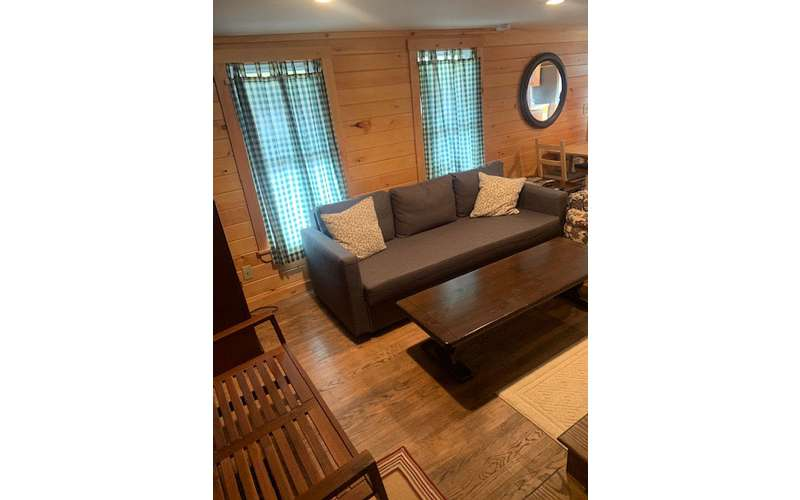 brown couch and brown wooden table in a living room