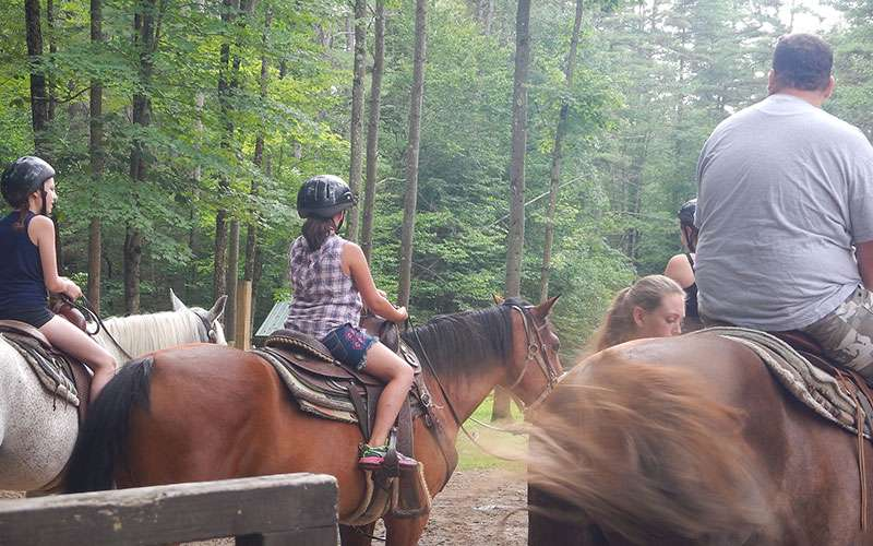 small group horseback riding in the woods