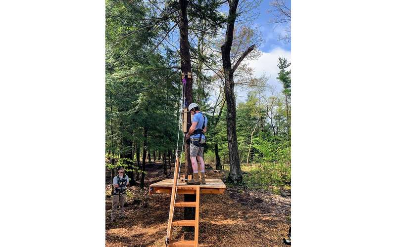 aerial treetop person on platform
