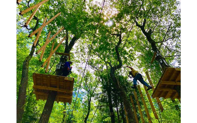 treetop adventure platforms