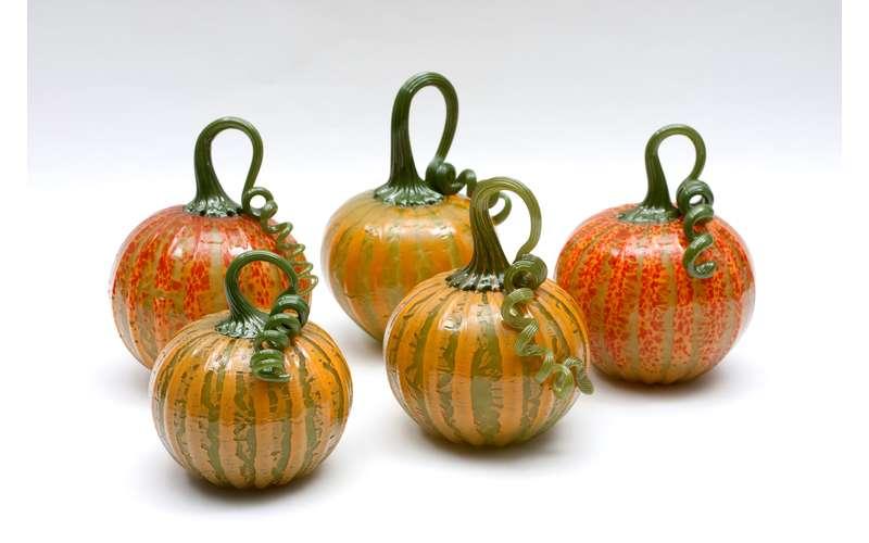 five mini pumpkins