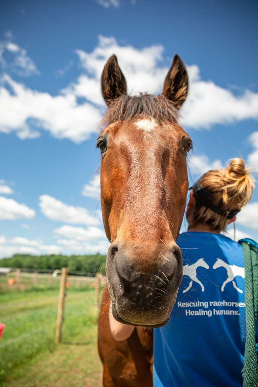 Therapeutic Horses of Saratoga, Inc. (3)