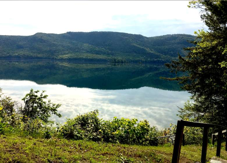 grassy shoreline near a calm lake
