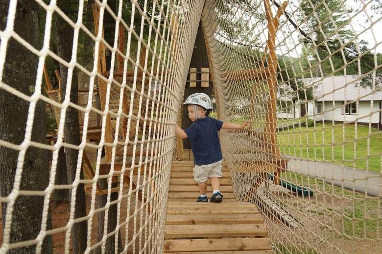 toddler in tree park