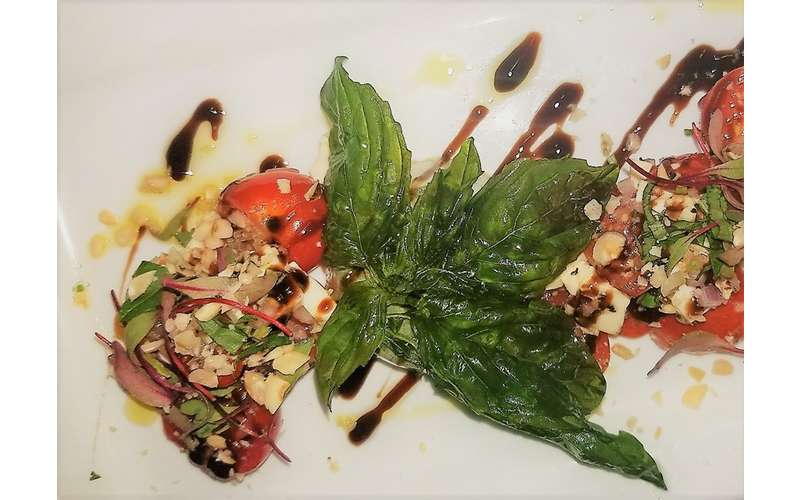 plate with tomatoes, greens, and dressing