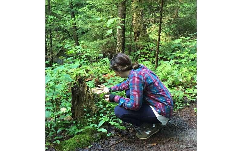 woman kneeling near a tree stump