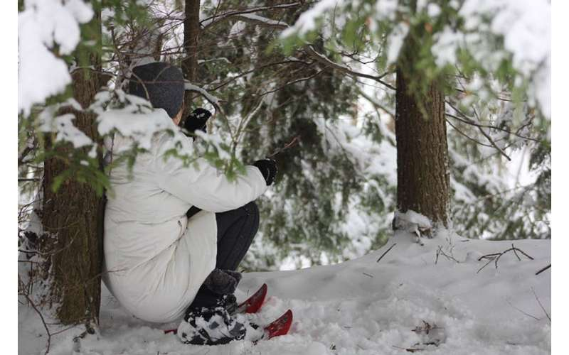person sitting down on ground in snow
