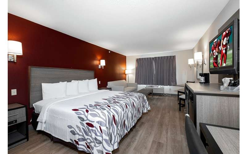 large bed in a hotel guest room