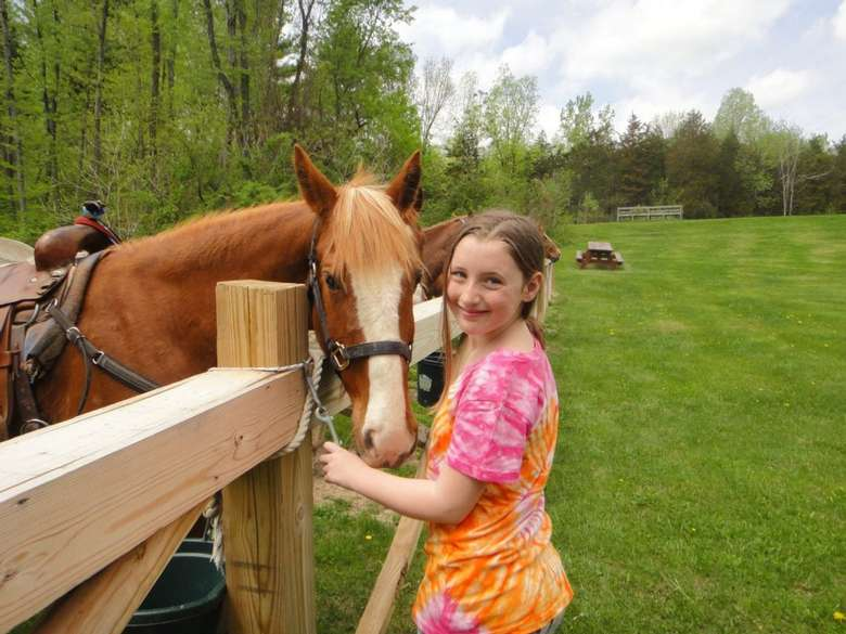 a girl standing near a brown horse and fence
