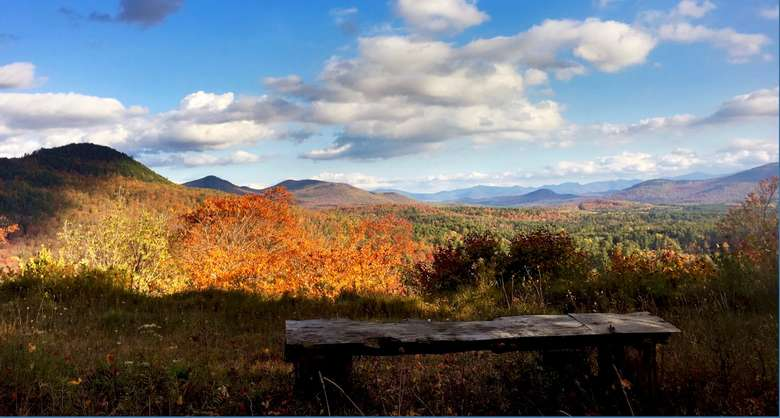 view of wooden bench and fall foliage on the mountains