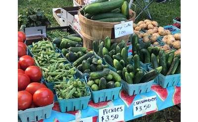 farmers market vegetable display