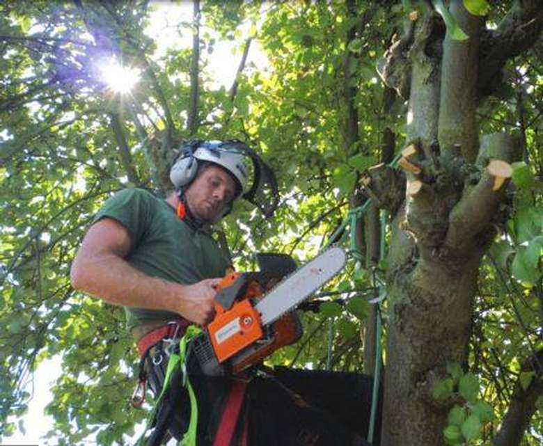 man with small chainsaw in tree