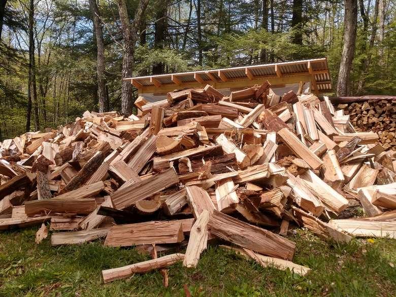 firewood on ground