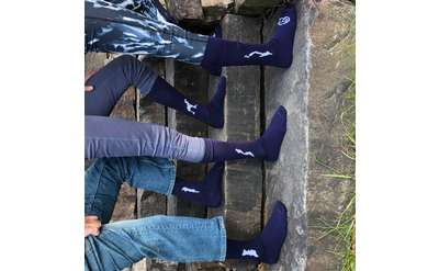 Silhouette of Brant, Friends, Loon, Schroon and Lake George embroidered in white on a navy blue sock.